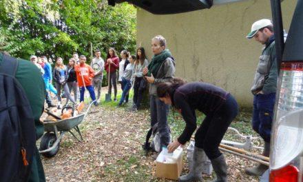 Festi'Tous au secours de la zone humide de L'Estelas !